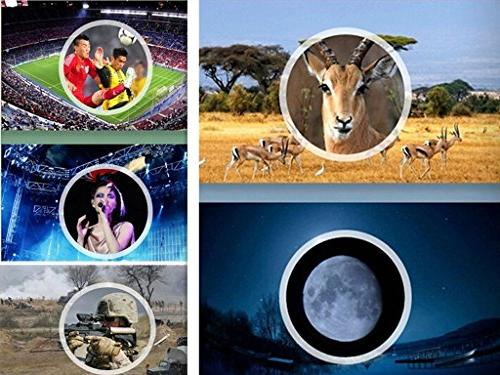 Luwint 40 HD Folding Binocular for Hunting Watching